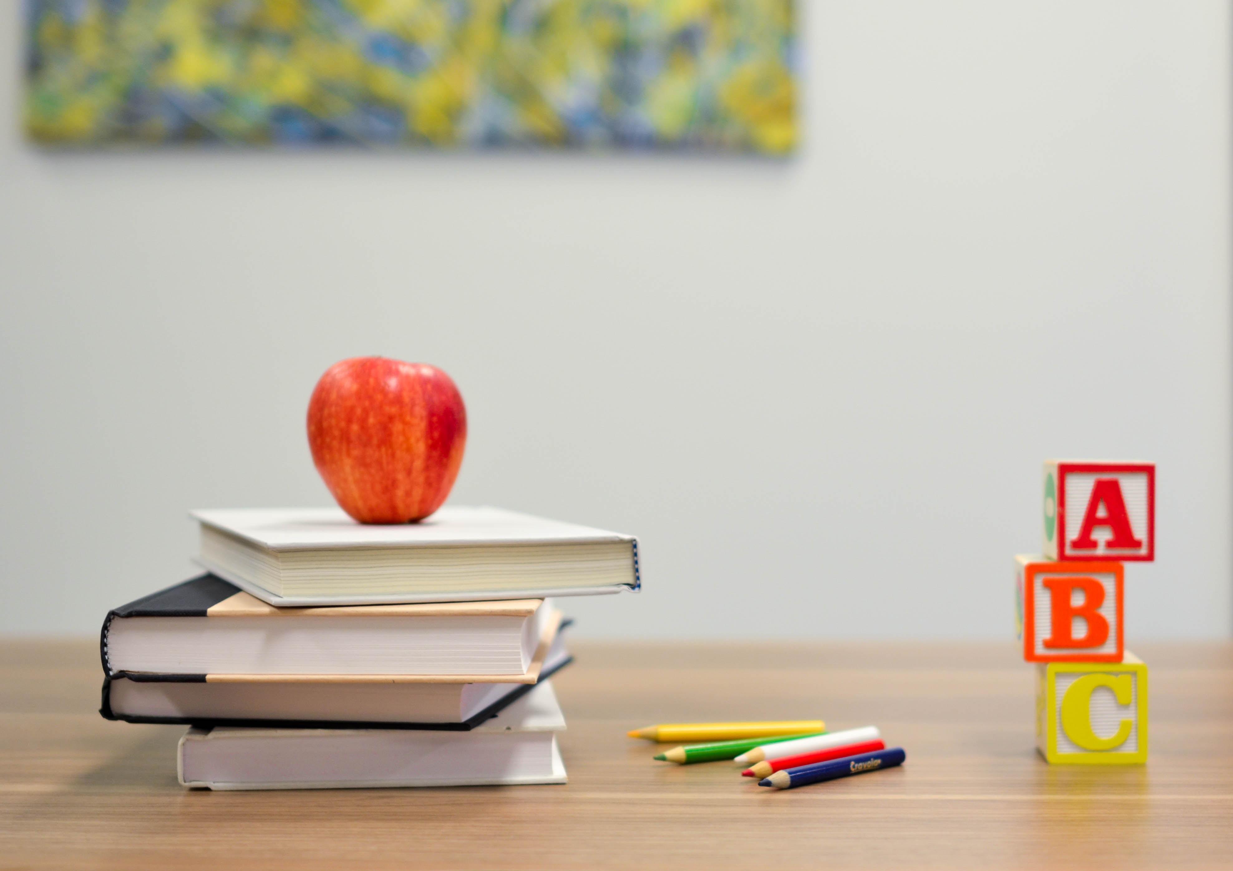 Özel Okul ve Finansal Bağımsızlık – II