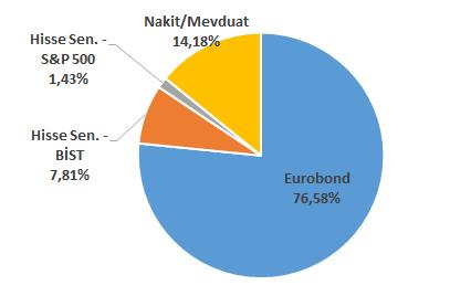 Portföy dağılımı (%) - 2019