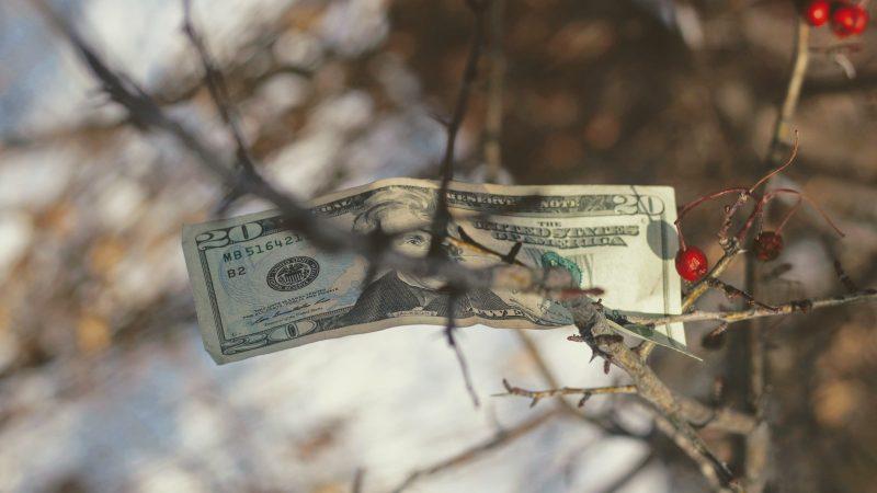 Bedava Para Verseler Alır mısınız?