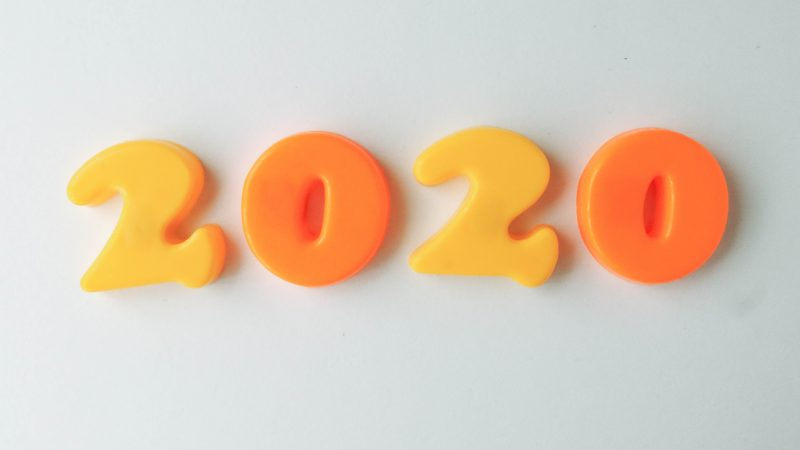 2020 Yılı Genel Portföy Performans Raporu